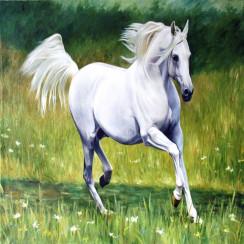 Алмазная мозаика Бегущая лошадь, на подрамнике - размер 20*20