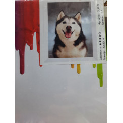 Картины по номерам 20*30