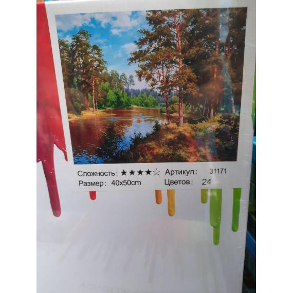 Картины по номерам 40*50