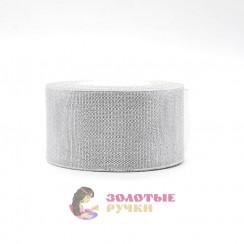 Лента декорированная металлизированная (люрекс) (упаковка 10 рулонов по 25 ярдов) ширина 50 мм, цвет серебро